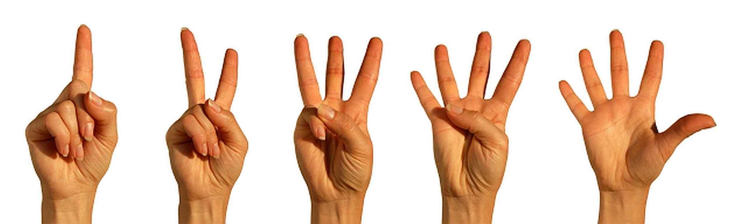 Five-Finger-Voting